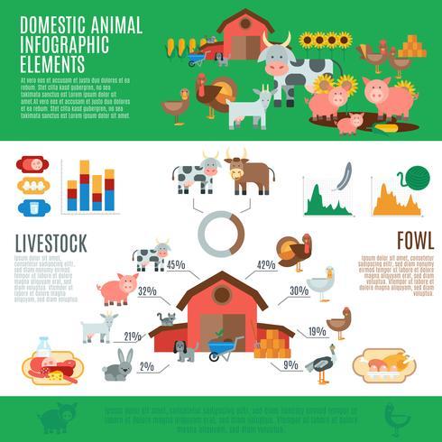 Haustiere Infografiken vektor