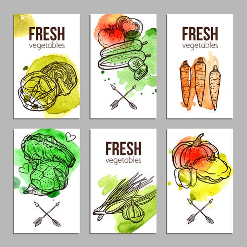Karten mit Gemüse vektor