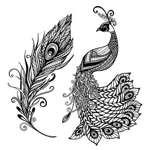Påfågelfjäderdesign svart klotterutskrift vektor