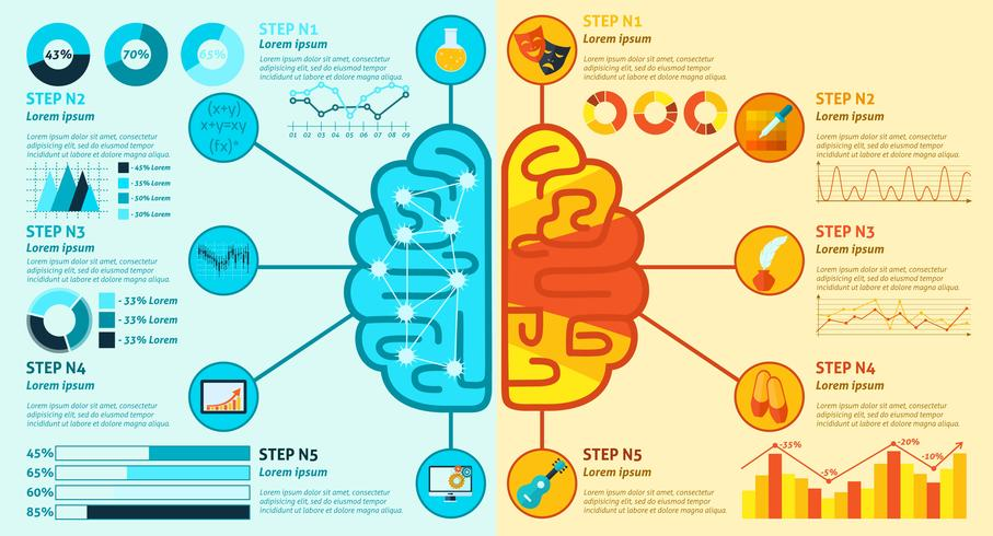 Linke und rechte Gehirn-Infografiken vektor