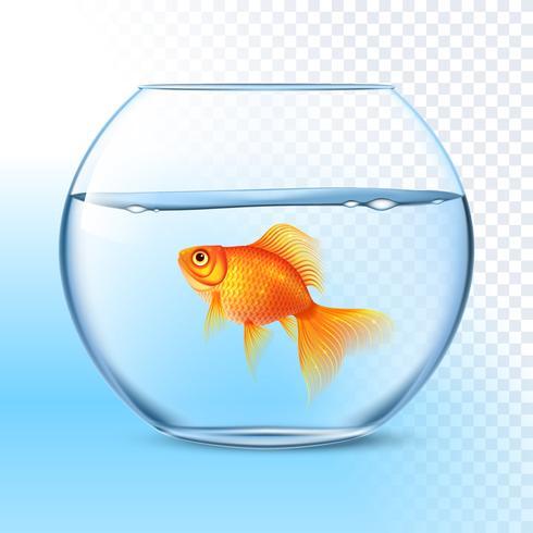 Guldfisk i vattenskål realistisk bild vektor