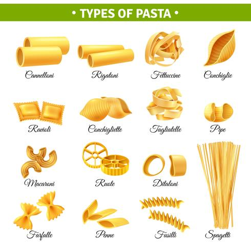 Pasta Typer Infographics vektor