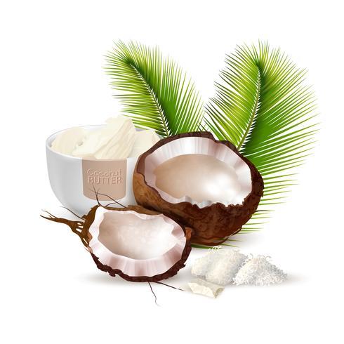 Kokosnöt realistisk illustration vektor