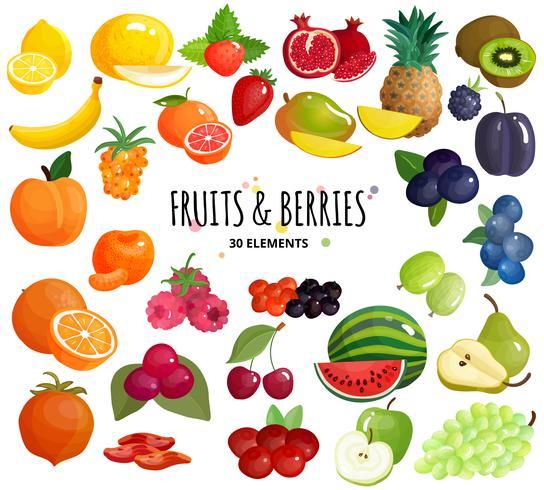 Frucht-Beeren-Zusammensetzungs-Hintergrund-Plakat vektor