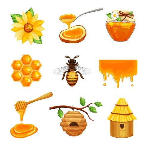 Honung isolerad ikonuppsättning vektor