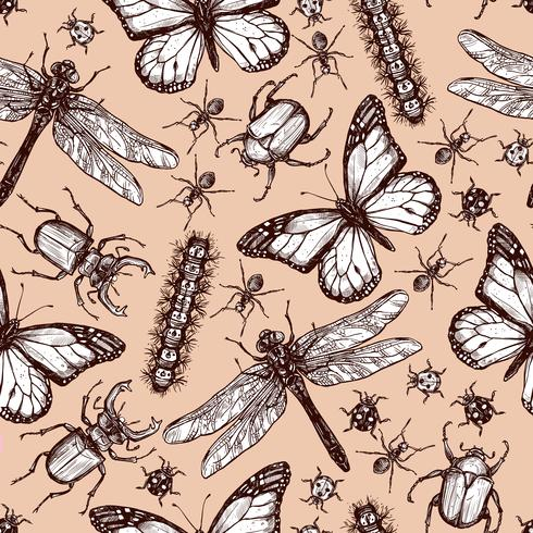 Tappningdragen insekt sömlös mönster vektor