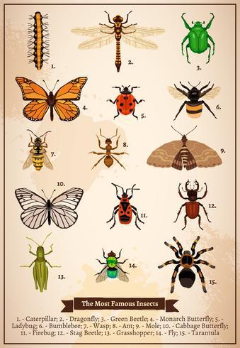 Insekter Vintage Book Page vektor
