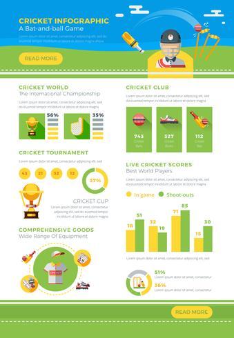 infographic cricket affisch vektor