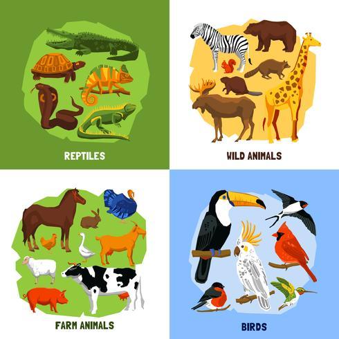 Cartoon 2x2 Zoo-Bilder vektor