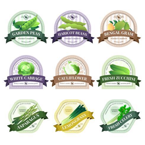 Gemüse und Kräuter flache Etiketten Set vektor
