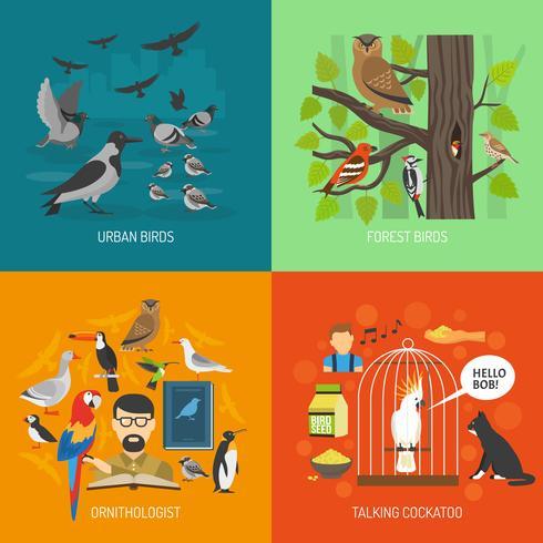 fågel 2x2 bilder koncept vektor