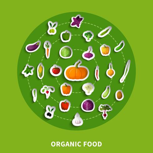 Ekologisk mat dekorativa papper ikoner vektor