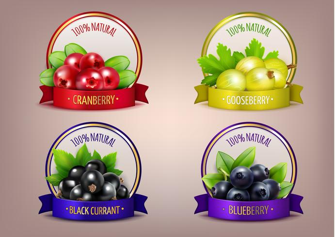 Berry Etiketter Realistisk Eco Collection vektor