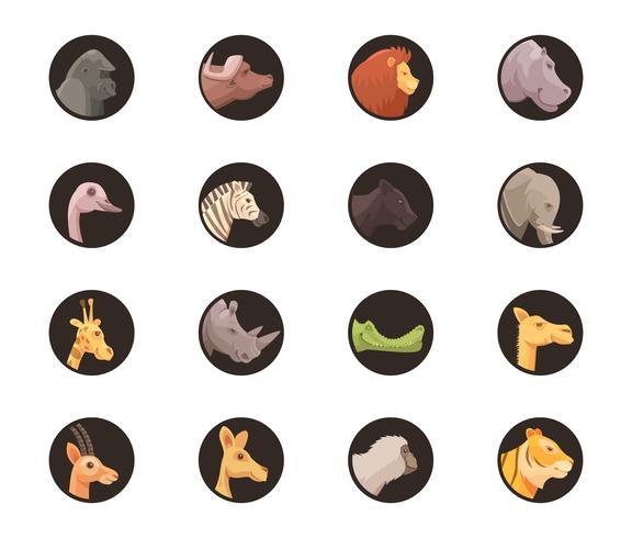 rund djur avatars samling vektor
