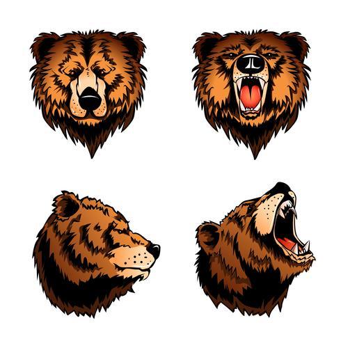 Färgade isolerade björnhuvud vektor