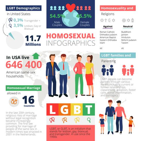 Homosexuelle Infografiken Vorlage vektor