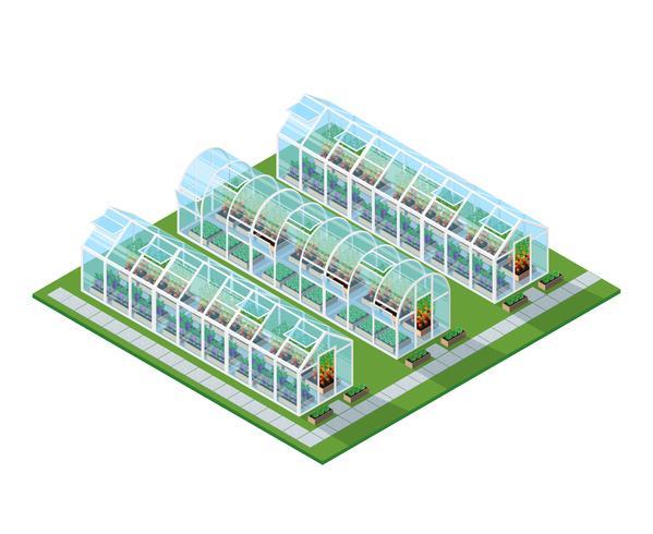Växthus Isometrisk Plats vektor