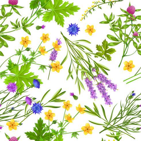 Kräuter und wildes Blumen-nahtloses Muster vektor