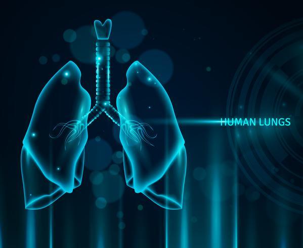 Mänskliga lungor bakgrund vektor