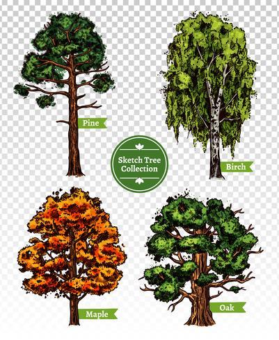 Farbskizze Baum Set vektor