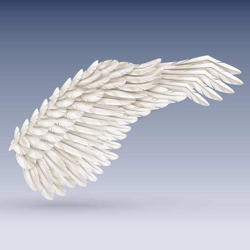 Weißer Vogelflügel vektor