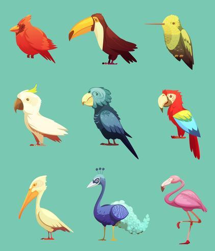 Exotiska Tropiska Fåglar Retro Ikoner Set vektor
