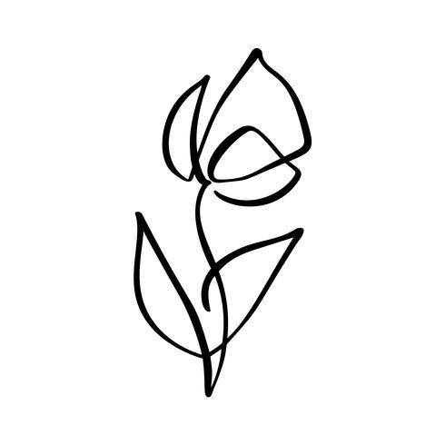 Tulpenblumenlogo. Ununterbrochene Linie Handzeichnung kalligraphisches Vektorkonzept. Skandinavisches Frühlingsblumenmusterelement im minimalen Stil. Schwarz und weiß vektor