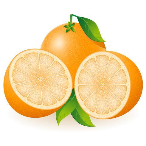 orange vektorabbildung vektor