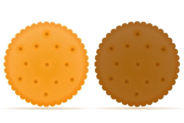 krispig kexkaka vektor illustration