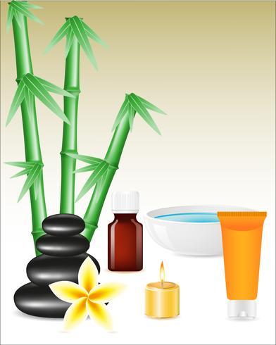 spa zen stenar och bambu vektor
