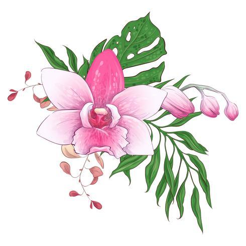 Exotische tropische Blumensträuße Paphiopedilum-Orchidee blüht Vektordesignsatz. vektor