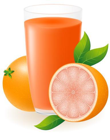 Grapefruitsaft-Vektor-Illustration vektor