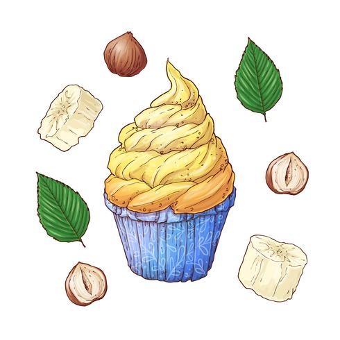 Sats med bananötter Cupcake. Handritning. Vektor illustration