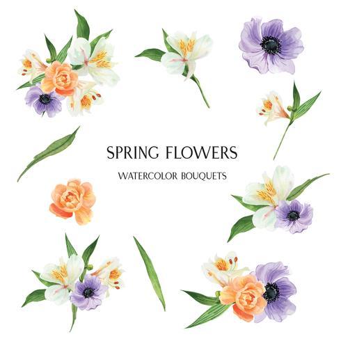 Vallmor, Lily, pion blommor buketter botaniska florals llustration vattenfärg isolerad vektor