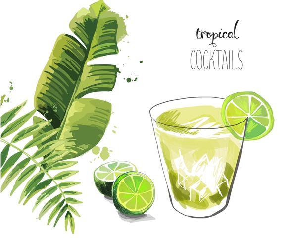 Cocktail. Tropischer Cocktailhintergrund des Sommers mit Palmblättern. vektor