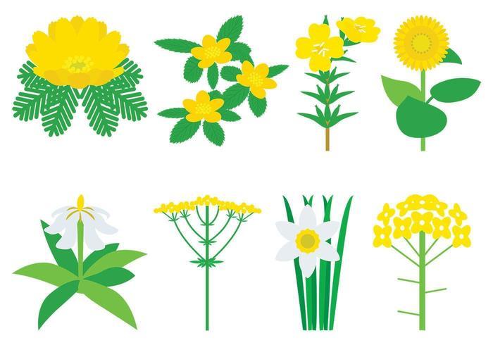Gula blommor vektorpaket vektor