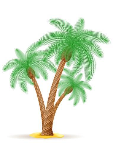 palm vektor illustration