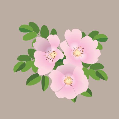 Blombukett. Blomram. Blomstra hälsningskort. Blommande blommor isolerade på grå bakgrund vektor
