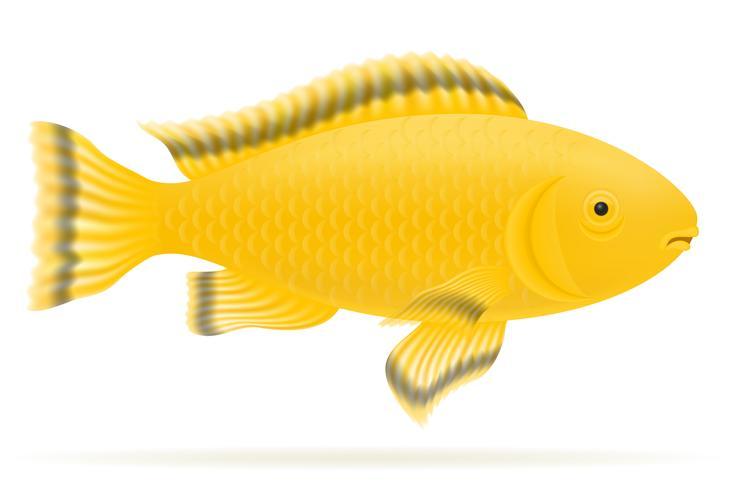 Aquarienfisch-Vektor-Illustration vektor