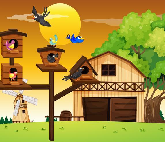 Viele Vögel leben in einem Vogelhäuschen vektor