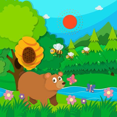 Bär und Bienen im Wald vektor