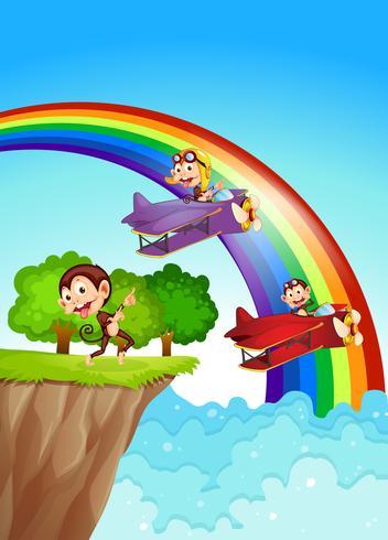 Lekfulla apor på klippan med en regnbåge vektor