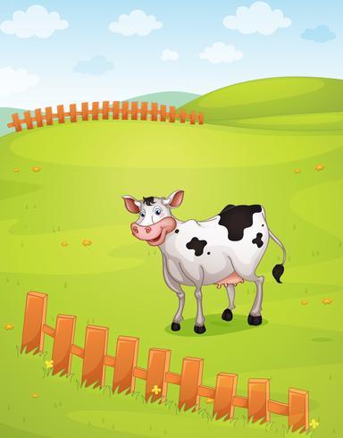 Eine Kuh vektor