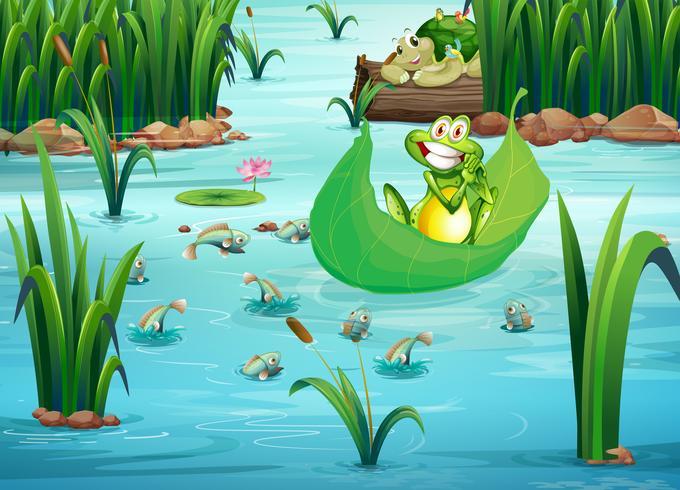 Ein verspielter Frosch und eine Schildkröte am Teich vektor