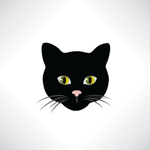 Katze. Kätzchengesicht getrennt. Hübsches Haustier Gestaltungselement vektor
