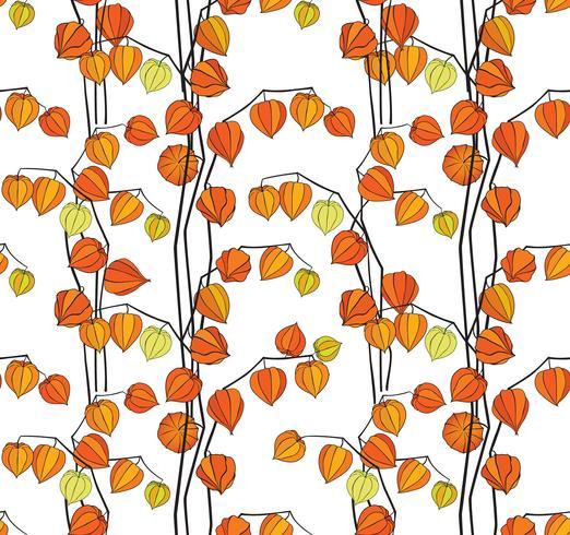Physalis-Hintergrund Muster des Blumenfalls nahtloser. Blühende Gartenbeschaffenheit vektor