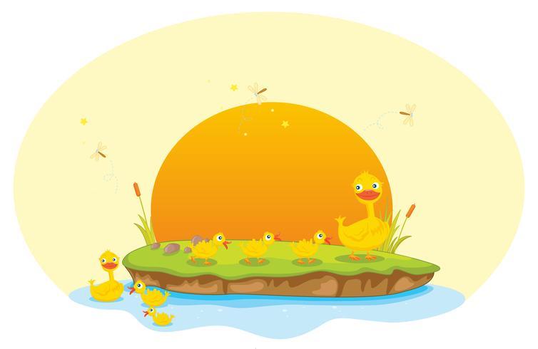 Ente und Entenküken vektor