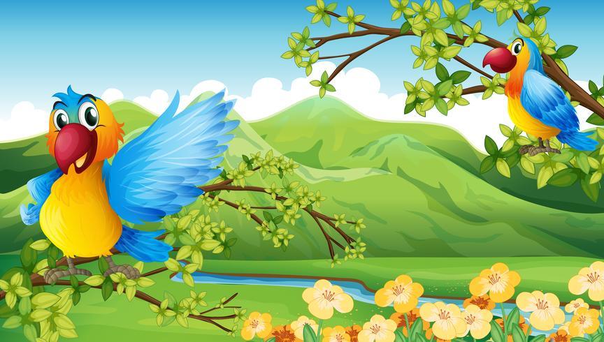 Vögel und ein Berg vektor