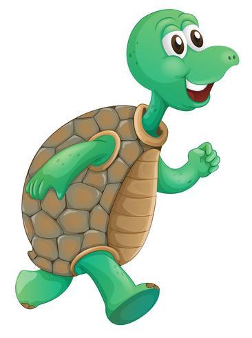 Eine alte Schildkröte läuft vektor