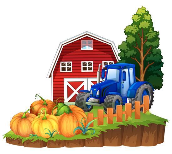 Bauernhofszene mit blauem Traktor und Kürbisen vektor